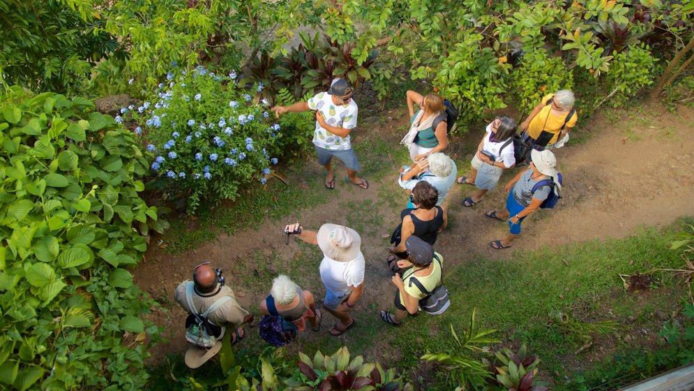 Moorea Tropical Garden - Tahiti